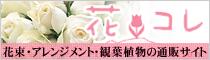 花・フラワーの通販サイト 花コレ