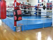 ALEX BOXING SPORTS GYM