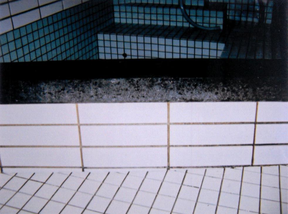 浴槽内 スケール清掃