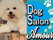 Dog salon Amour
