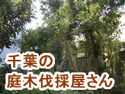 千葉の庭木伐採屋さん