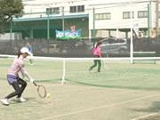 野火止テニスクラブ クラス紹介 画像