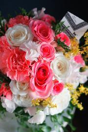 さまざまな感動のシーンにNierの花を・・・ 画像