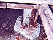 シロアリ駆除の施工例