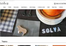 株式会社 solva