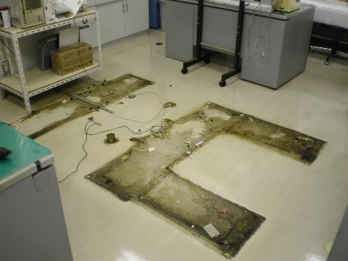 ビーニールシート床の剥離清掃